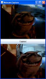 webcam_1068